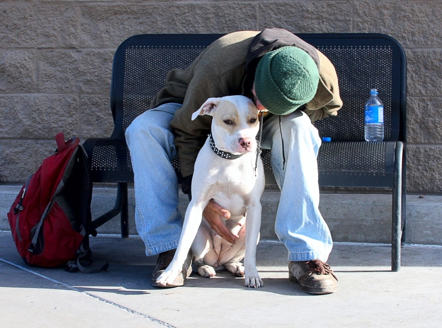 I found this homeless man with his dog, he was ever so gentle and loving with man's best friend. Chris told me his dog, Brandy, was all he had in the world. His last dog was taken away from him by the police because he did not have tags or a ...