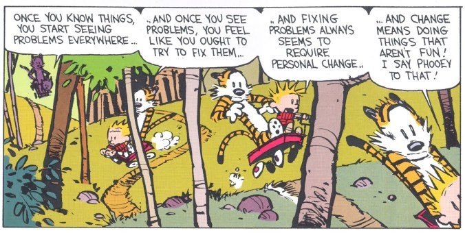 Calvin and Hobbes on Ignorance - Bill Watterson